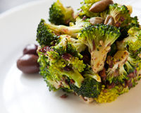 Broccolibunt Royaltyfria Bilder