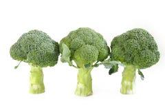 Broccoligrönsak på vit Royaltyfri Foto
