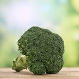 Broccoligrönsaker i sommar Royaltyfri Fotografi