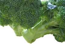 broccoligreen Royaltyfria Foton