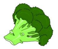 Broccoligroente royalty-vrije stock afbeelding