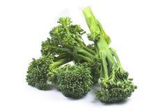 broccolini φρέσκο Στοκ εικόνα με δικαίωμα ελεύθερης χρήσης
