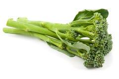 Broccolini behandla som ett barn isolerad broccoli arkivfoton