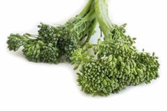 Broccolini Royalty Free Stock Images