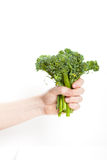 Broccolini Royalty Free Stock Photos