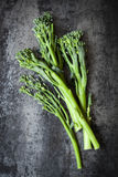 Broccolini on Slate Overhead view Stock Images