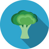 Broccolipictogram Royalty-vrije Stock Fotografie