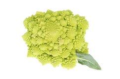 broccoliromanesco Fotografering för Bildbyråer