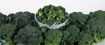 Broccolis Stock Photos