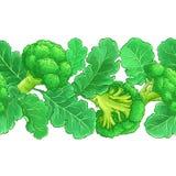Broccolivektormodell vektor illustrationer