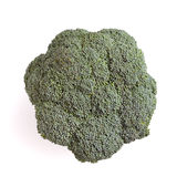 Broccolli. Vibrant green broccolli head isolated against white background Royalty Free Stock Images