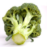 Broccolli. Vibrant green broccolli head isolated against white background Stock Image
