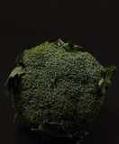 broccolli. On a black background Royalty Free Stock Photos