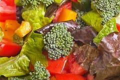 Broccolli Salad Royalty Free Stock Photography