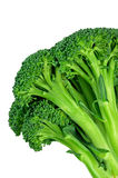 Broccolo (con il percorso di residuo della potatura meccanica) Fotografia Stock Libera da Diritti