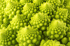 Broccolo di Romanesco Fotografie Stock