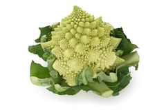 Broccolo di Romanesco, cavolfiore romano Immagini Stock