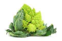 Broccolo di Romanesco del cavolfiore Fotografie Stock Libere da Diritti