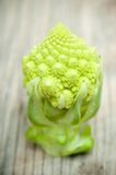 Broccolo di Romanesque Immagini Stock