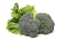 Broccolo ed insalata Fotografia Stock