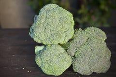 Broccolo fresco Fotografia Stock