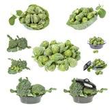 Broccolo fresco Fotografie Stock