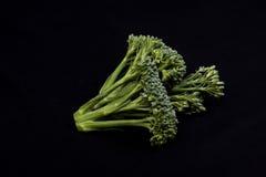 Broccolo su fondo nero Immagini Stock