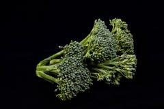 Broccolo su fondo nero Fotografia Stock Libera da Diritti