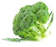 Broccolo isolato su priorità bassa bianca Fotografia Stock Libera da Diritti