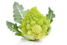 Broccolo raro Fotografia Stock