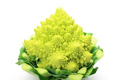 Broccolo romanesco Stockbild