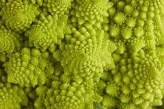 Broccolo romano Fotografia Stock
