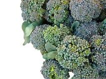 Broccolo su priorità bassa bianca Immagini Stock