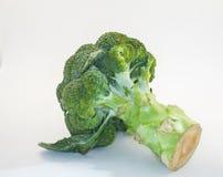 Broccolo su priorità bassa bianca Fotografie Stock