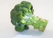Broccolo su priorità bassa bianca Fotografie Stock Libere da Diritti