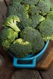 Broccolo verde fresco Immagini Stock