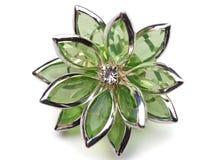 Brocha de la flor Fotografía de archivo libre de regalías