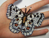 Broche Apollo da borboleta Foto de Stock