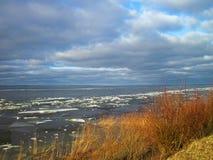 Broche de Curonian en glace d'hiver, Lithuanie Photos stock