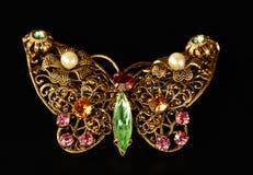 Broche de la mariposa Imagenes de archivo
