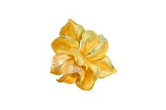 Broche de oro con los diamantes Imagen de archivo