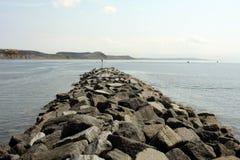 Broche de port de la limette REGIS Photos stock