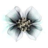 Broche del diamante aislada en blanco Fotografía de archivo libre de regalías