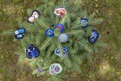 Broche du ` s de femmes de laine fulled sur des branches de sapin vert photo stock