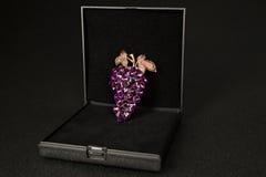 Broche in een giftdoos Royalty-vrije Stock Fotografie