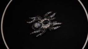 Broche sob a forma de uma aranha em um suporte de gerencio preto Joia superior Macro vídeos de arquivo