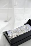 Broche y contactos de plata Imagen de archivo libre de regalías
