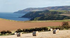 Broches de retenue de foin sur la côte écossaise Photographie stock libre de droits