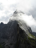 Brochet de montagne Photographie stock libre de droits
