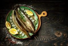 Brochet de poisson cru avec des herbes et des épices du plat Photo horizontale Fond de nourriture Secteur noir des textes photos libres de droits
